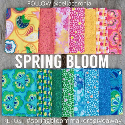 Spring Bloom Equals IG